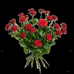 En underbart vacker bukett med 24 stycken röda rosor.