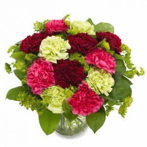 Bukett med nejlikor i lila, rosa och ljusgrönt.