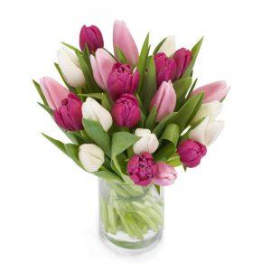 Bukett med tulpaner i vitt, lila och rosa, tillsammans med gröna blad. Finns att beställa som blombud hos Euroflorist, en väletablerad blomsterförmedlare på nätet med lång erfarenhet av blomsterförmedling.