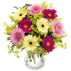 Bukett med germinis i pigga, blandade färger. Blommorna finns hos Euroflorist.