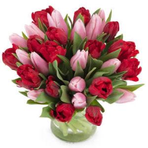 Tulpanbukett med tulpaner i rött och rosa. Superfin! Buketten finns hos Euroflorist.
