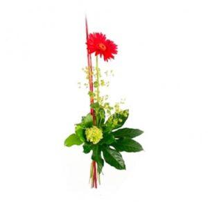 Nivåbukett med en röd gerbera, ljusa snittblommor och strån. En enkel nivåbukett från Florister i Sverige.