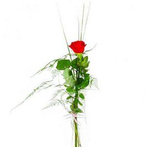 En röd ros och dekorationsgrönt. En bukett ur Florister i Sveriges sortiment.