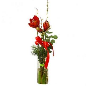 Julbukett med röd snittamaryllis och grönt. Rött band runt buketten. Skicka julblommor med bud via Florister i Sverige!