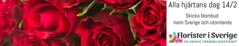 Skicka blommor, choklad och gosedjur med bud via Florister i Sverige!